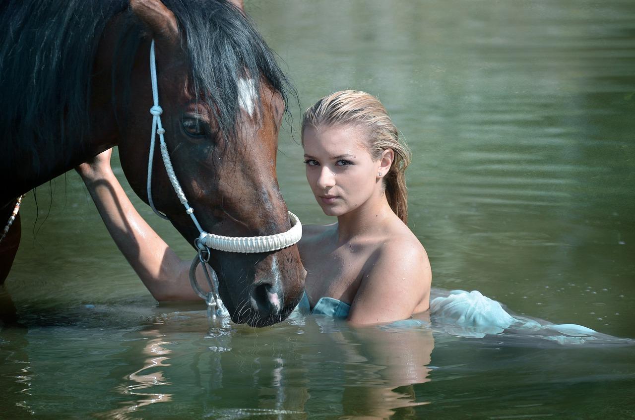 caballo abrevadero bebederos video